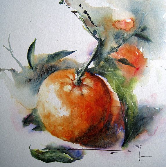 Solo Mandarine Peinture Florale Art De La Peinture Aquarelle