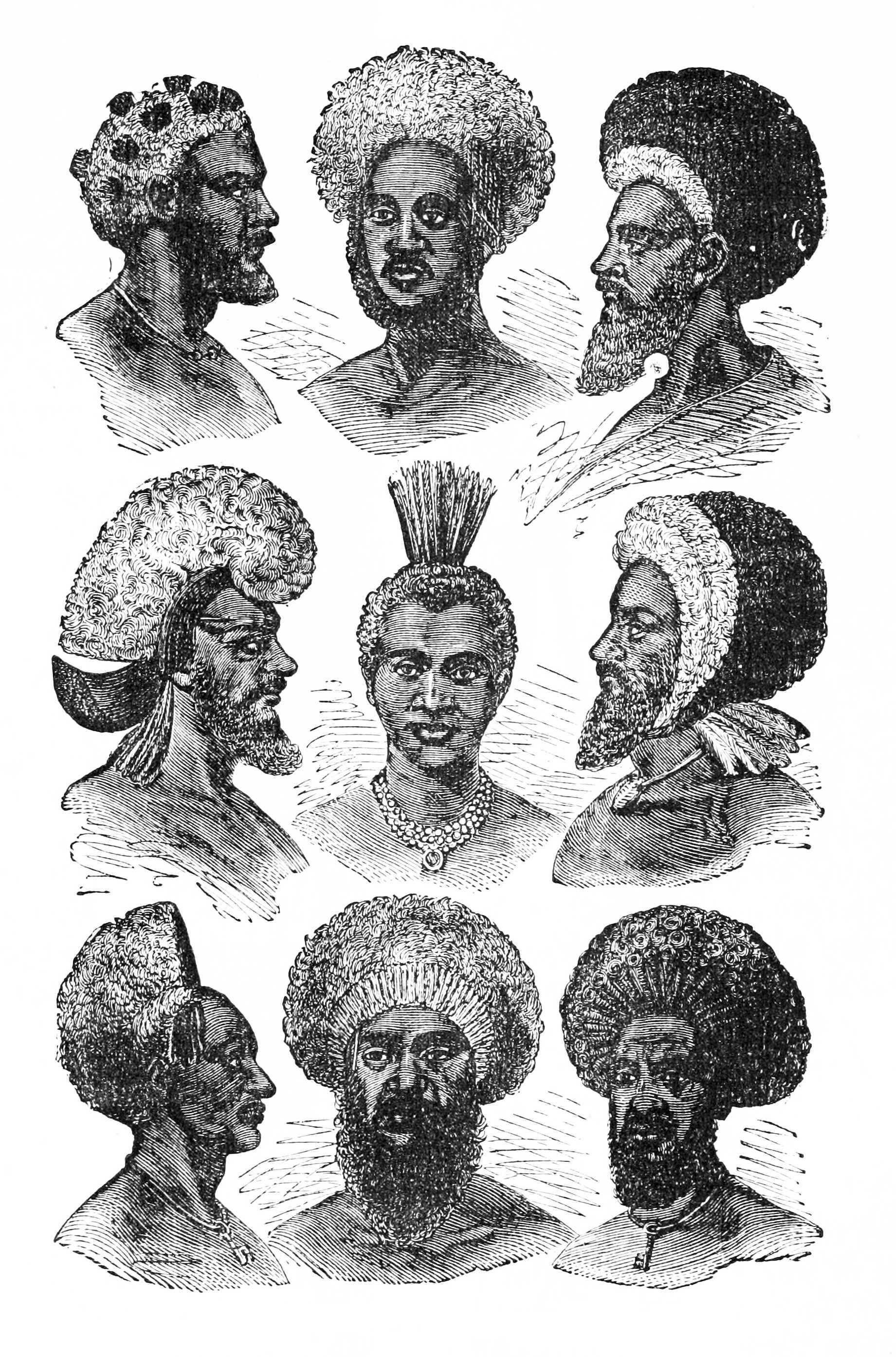 Ancient Fijian Hair African History History Culture Art