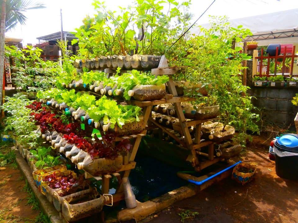 Amazing Backyard Vegetable Garden Ideas Vegetable Container Garden Picture Gal Vegetable Garden Planning Garden Layout Vegetable Container Gardening Vegetables