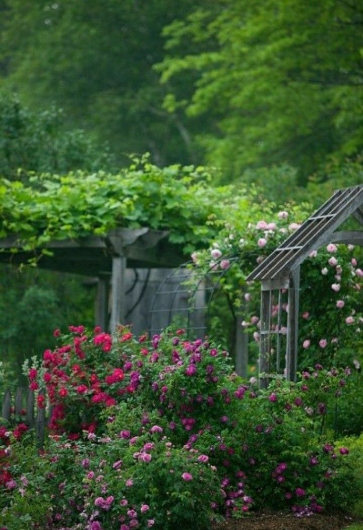 Pin by on Pinterest Gardens Garden ideas and Water