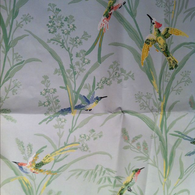 Thibaut Augustine Bird wallpaper, Feature wallpaper