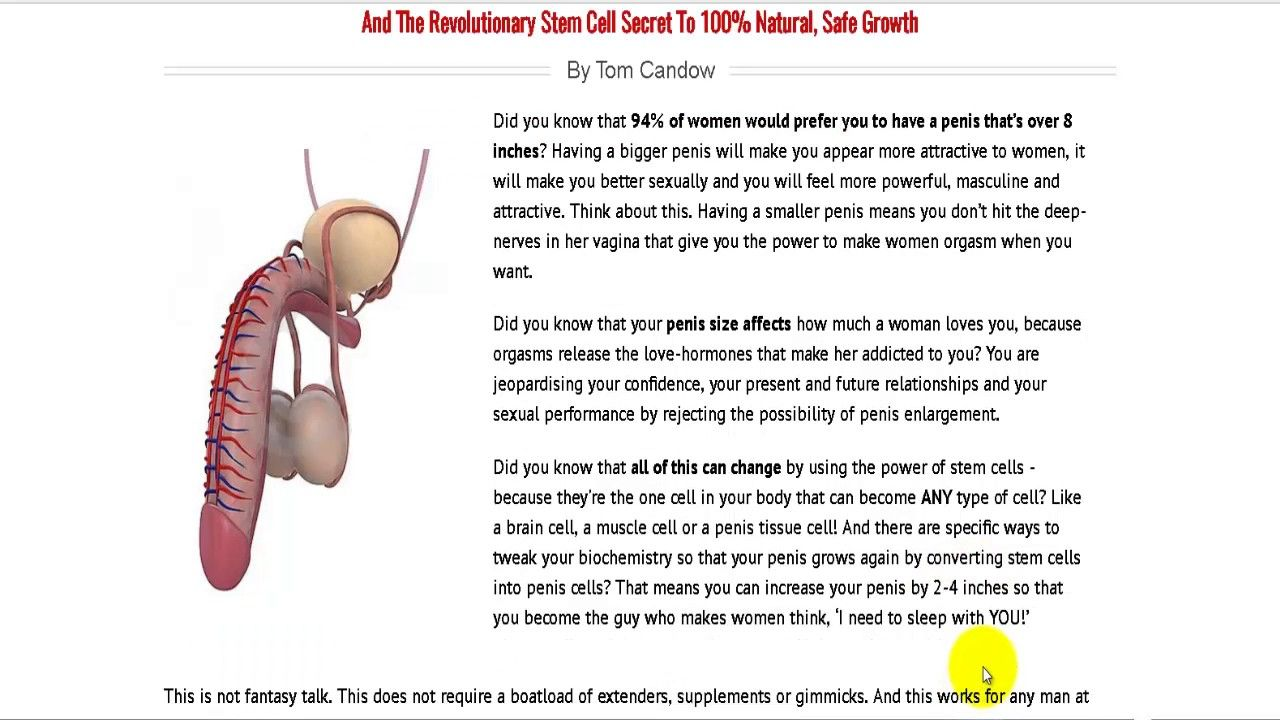 How To Increase Stem Cells Naturally With Tom Candow Ebook-Bonuses To Pe...