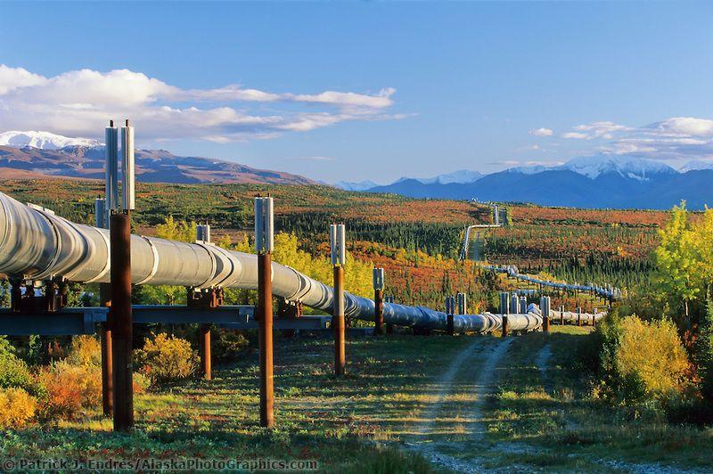 The Trans Alaska Oil Pipeline Stretches For 800 Miles From Prudhoe Bay Arctic Ocean To Valdez Bay Across The Autumn Tun Alaska Photos Alaska Mountains Alaska