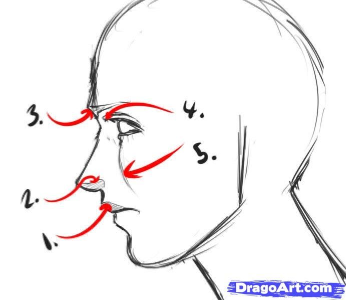 How To Draw An Easy Face Step 4