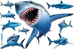 Sharks   Wall Decal Removable Wall Decal