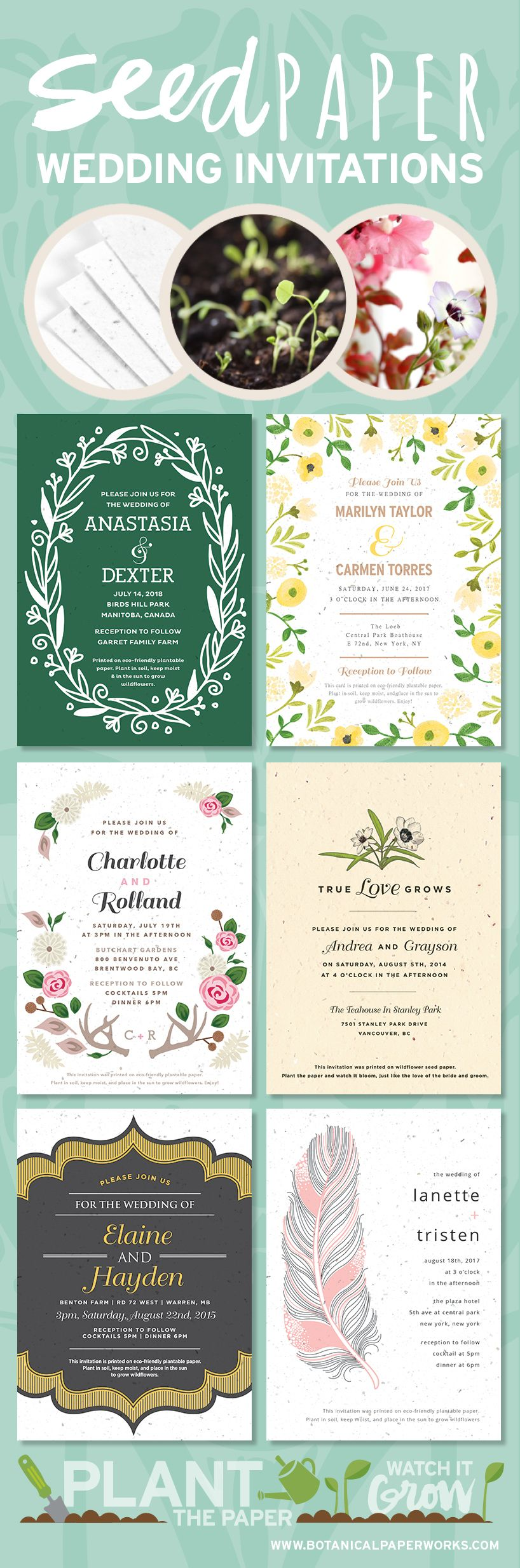 Plant love & let the memory of your wedding day live on with seed ...