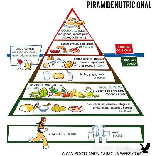 Piramide Alimentaria Baby Food Recipes Food Pyramid Healty Food