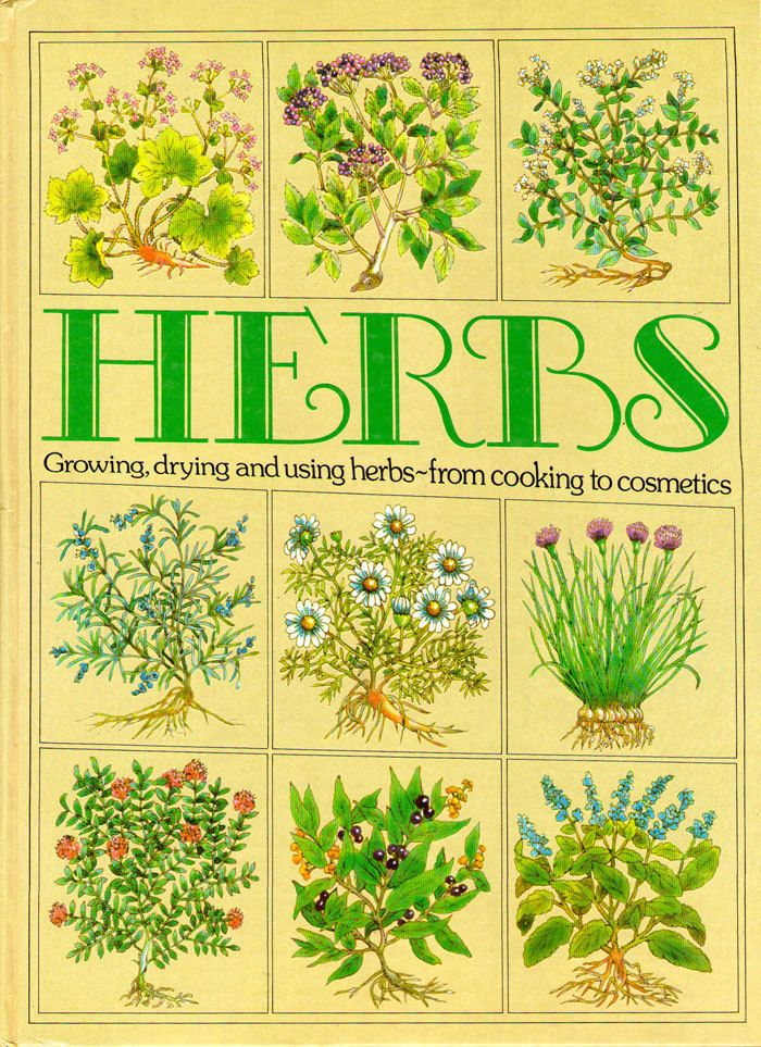 Vintage Herbs Book Illustrated Cooking Growing Medicinal