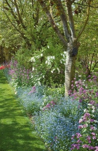 Massif fleuri à l\'ombre des arbres   MON JARDIN   Pinterest   Garden ...