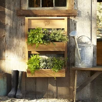 vertical wall garden - Google Search