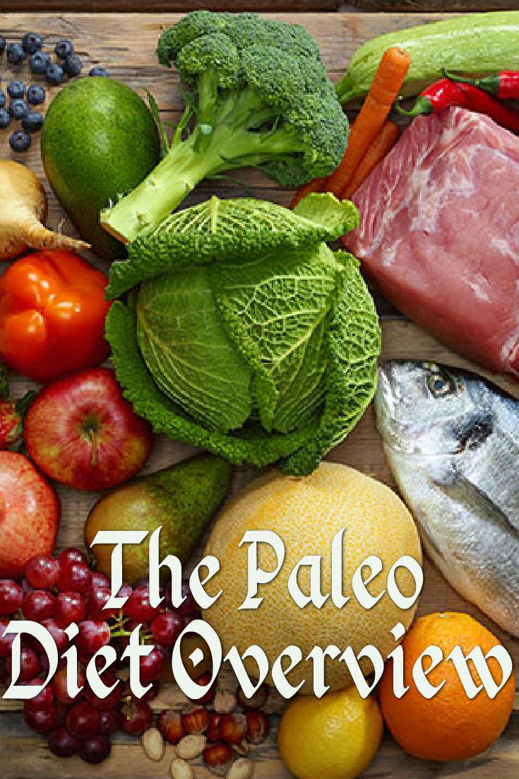 A Basic Overview Of The Paleo Diet Clean Eating Paleo Diet Diet Paleo Vegan Diet