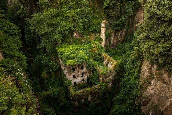te presentamos imágenes en las que se muestra cómo la naturaleza recupera con velocidad el territorio que le pertenece y se lleva consigo la creación humana