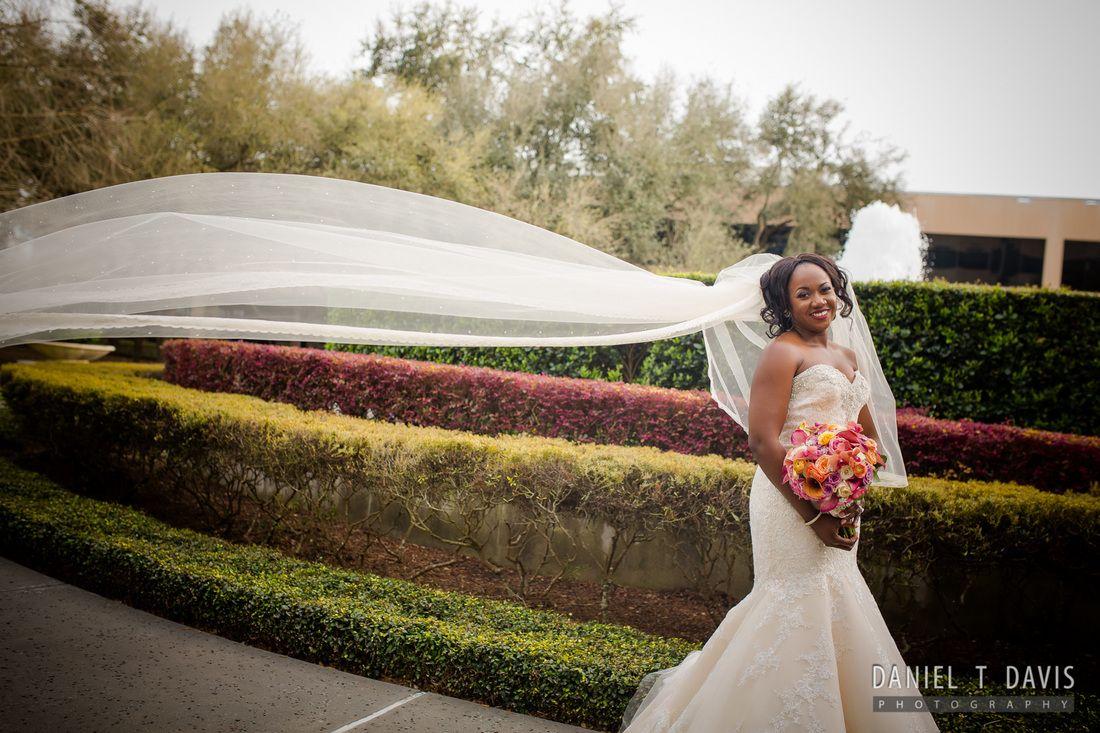 Nigerian wedding in houston african and african american wedding