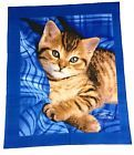 Blue Eyes Kitten -Double Sided No sew Fleece Fabric