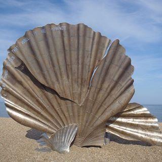 ✨#fashion #art #photography #beach #shell #pr #fashionpr