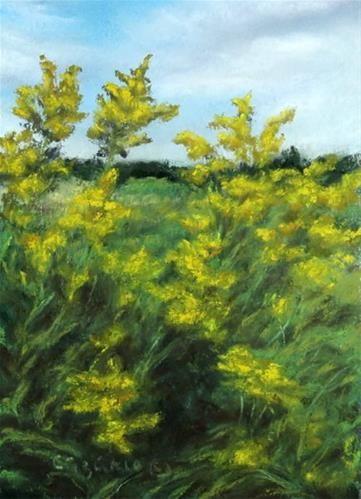 "Daily Paintworks - ""Goldenrod"" - Original Fine Art for Sale - © Carol Zirkle"