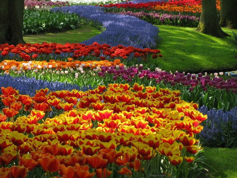 20 Of The Most Beautiful Nature Made And Man Flower Gardens In World 1