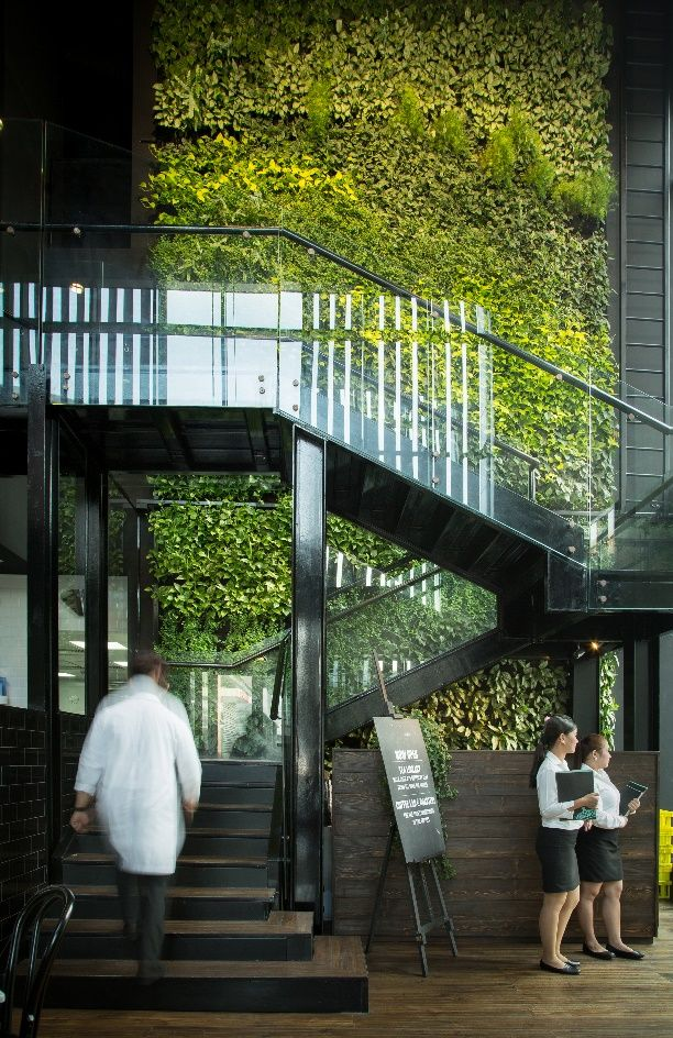 Leopold's of London | Green wall, Vertical garden wall ...