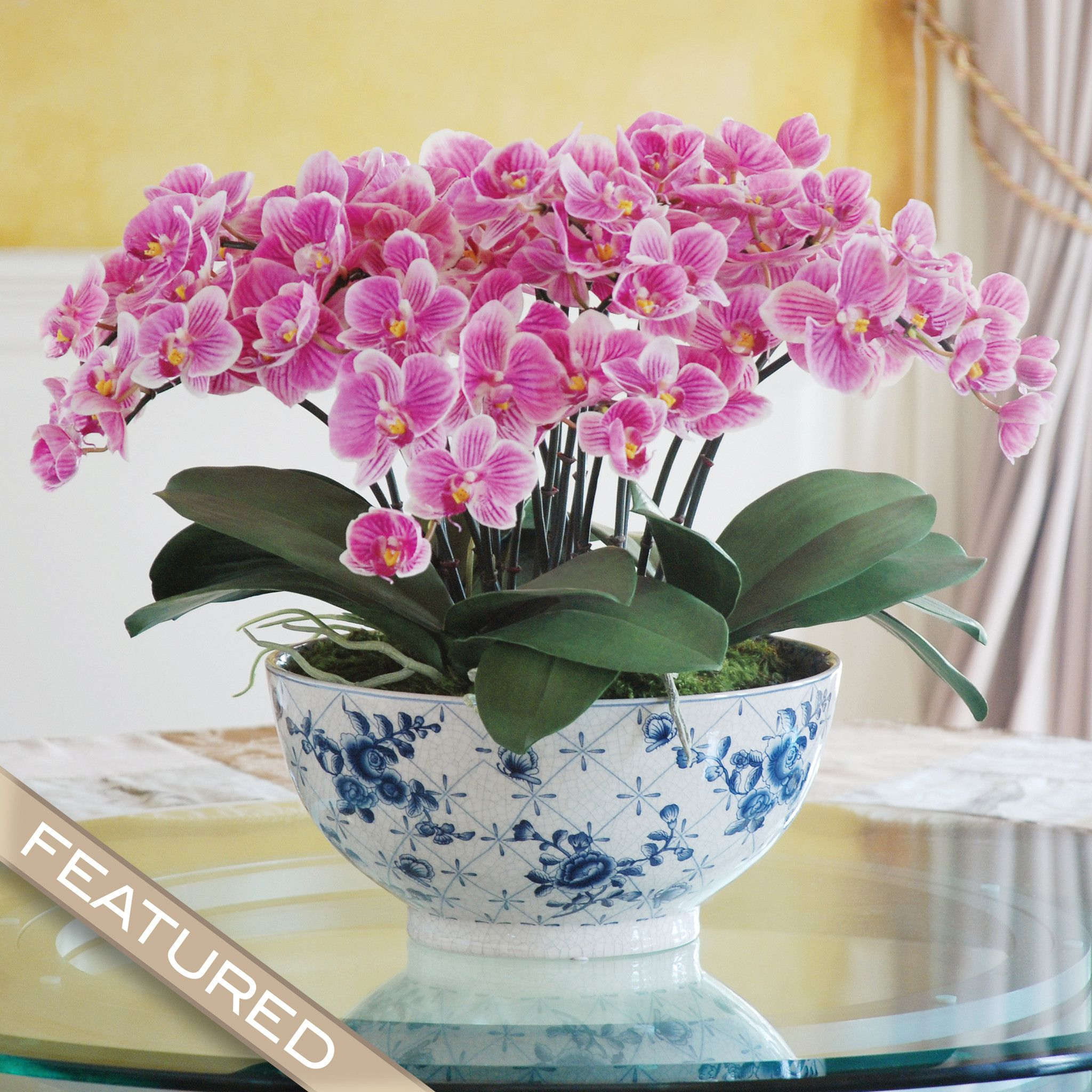 Orchid Flower Arrangements For Weddings: Eclectice Phalaenopsis Orchid Centerpiece (dp770-puwh