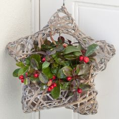 Next – Flowers and Gift Cards delivered next day - Hanging Star