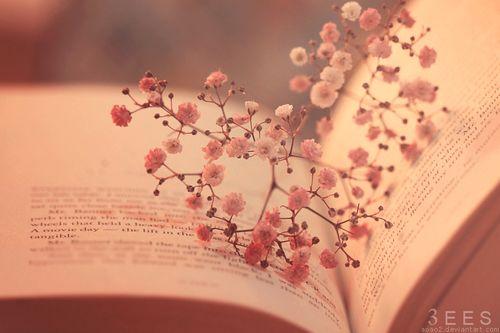 Frases Bonitas De Libros Tumblr Gong Shim B