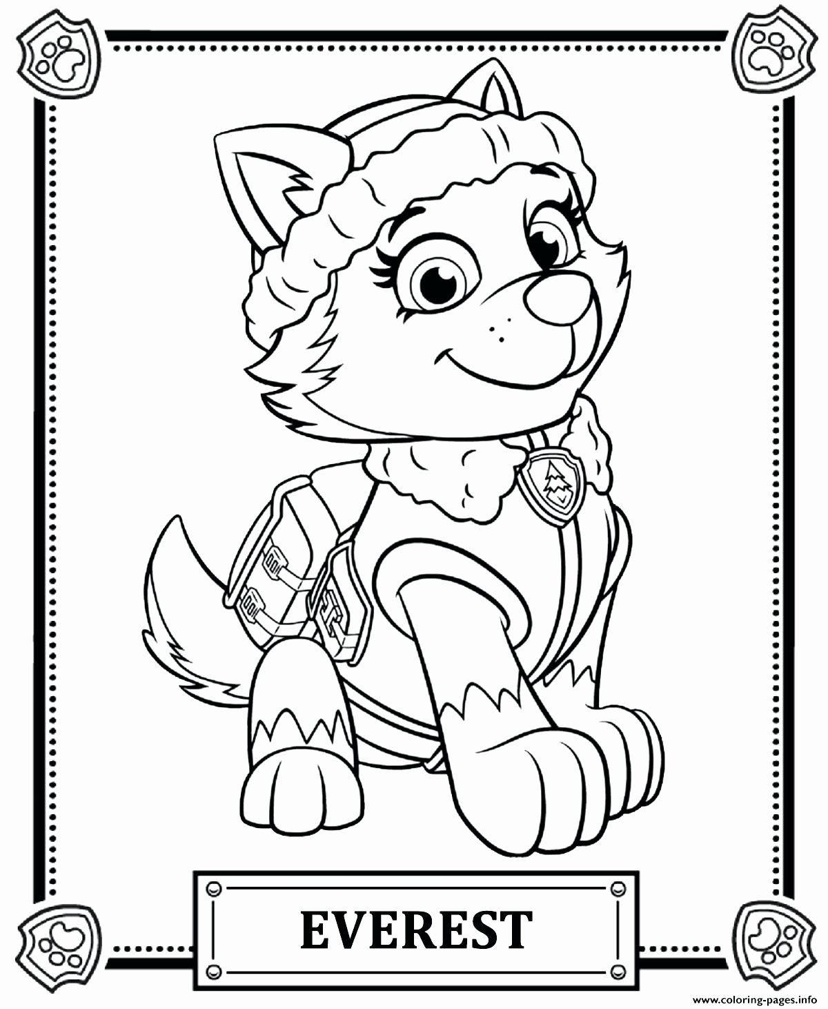Cartoon Coloring Book Pdf Download Lovely Paw Patrol Drawing Games At Paintingvalley Paw Patrol Coloring Paw Patrol Coloring Pages Sky Paw Patrol