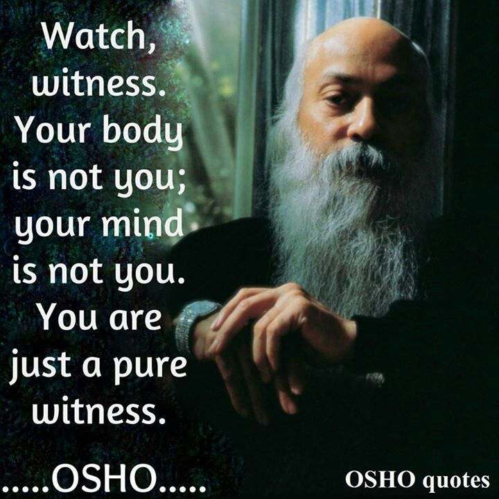 Osho Quotes On Life And Death: Pin By Karina Chavez On Fave Books/Quotes