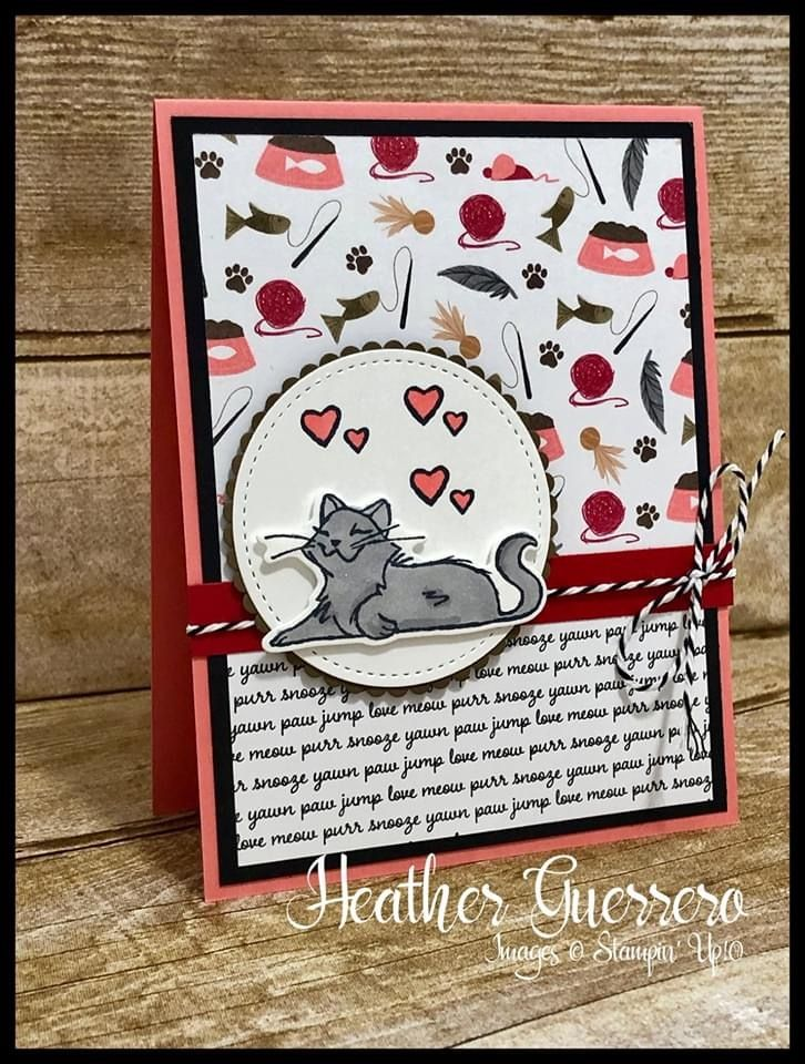 Stampin Up Playful Pets Suite So Fun In 2020 Pet Sympathy Cards Pet Suite Cat Cards