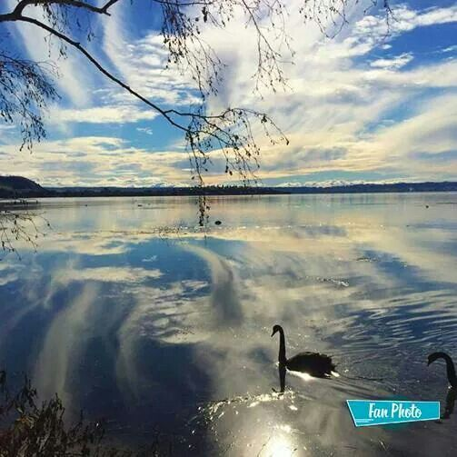 Rotorua New Zealand ♥♥♥