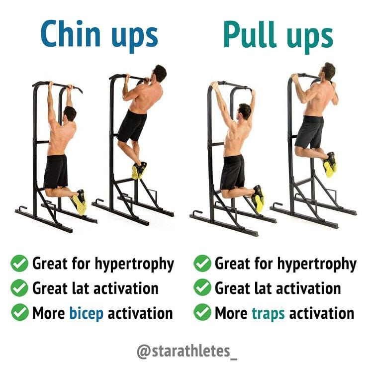 Pull Ups Workout Routine for Muscle Growth | Gym tips ...