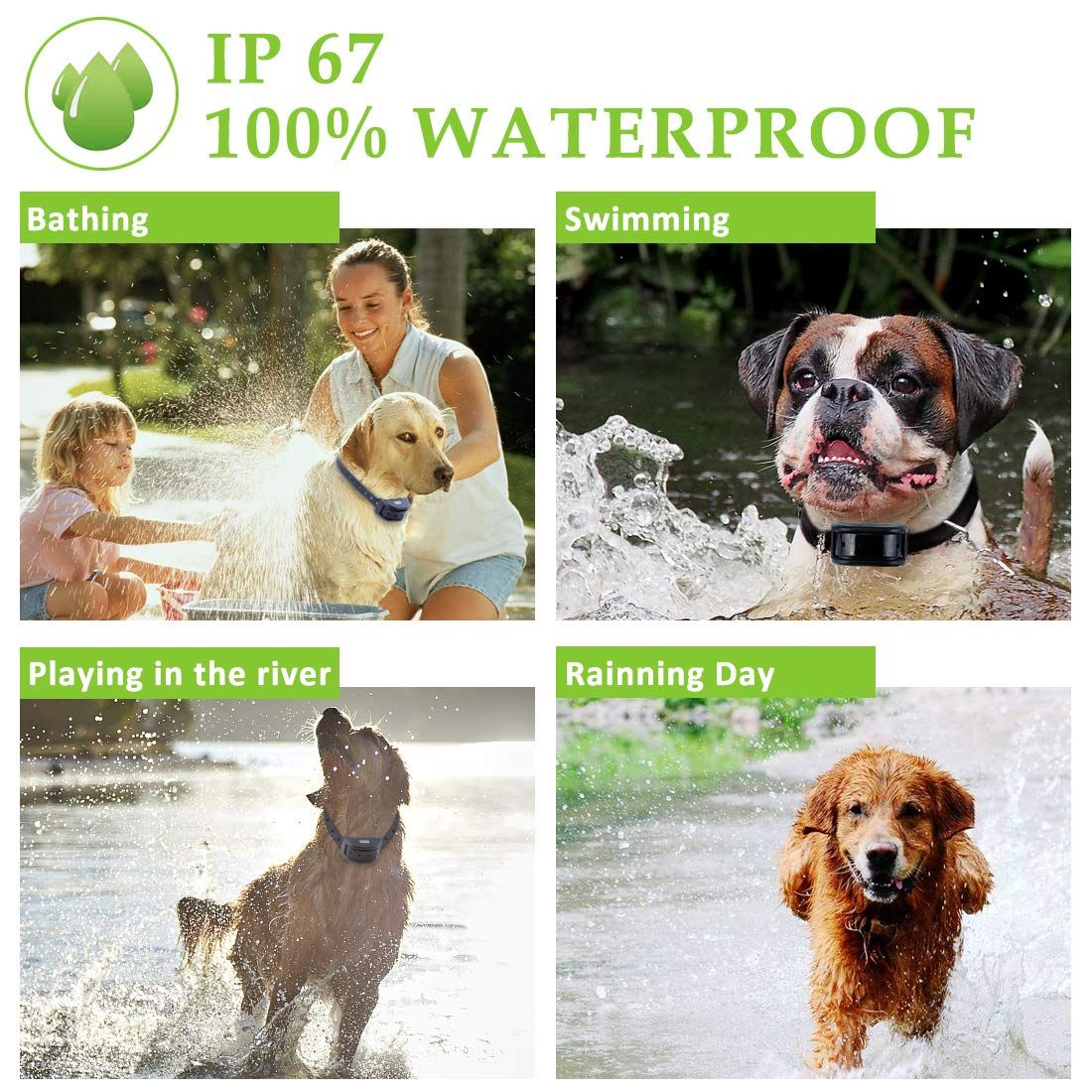 Wdfzone Dog Shock Collar Training For Dogs Waterproof Rechargeable