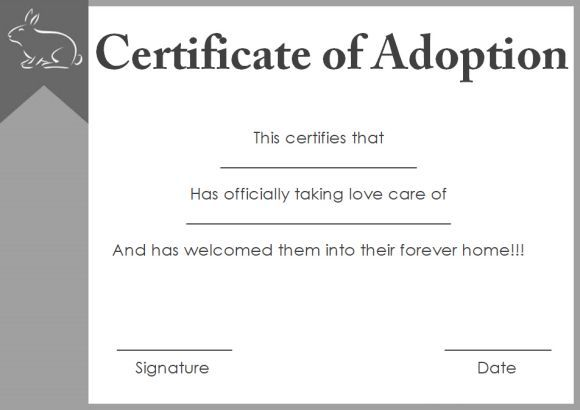 Adoption Certificate Template Anniversary Certificate Template