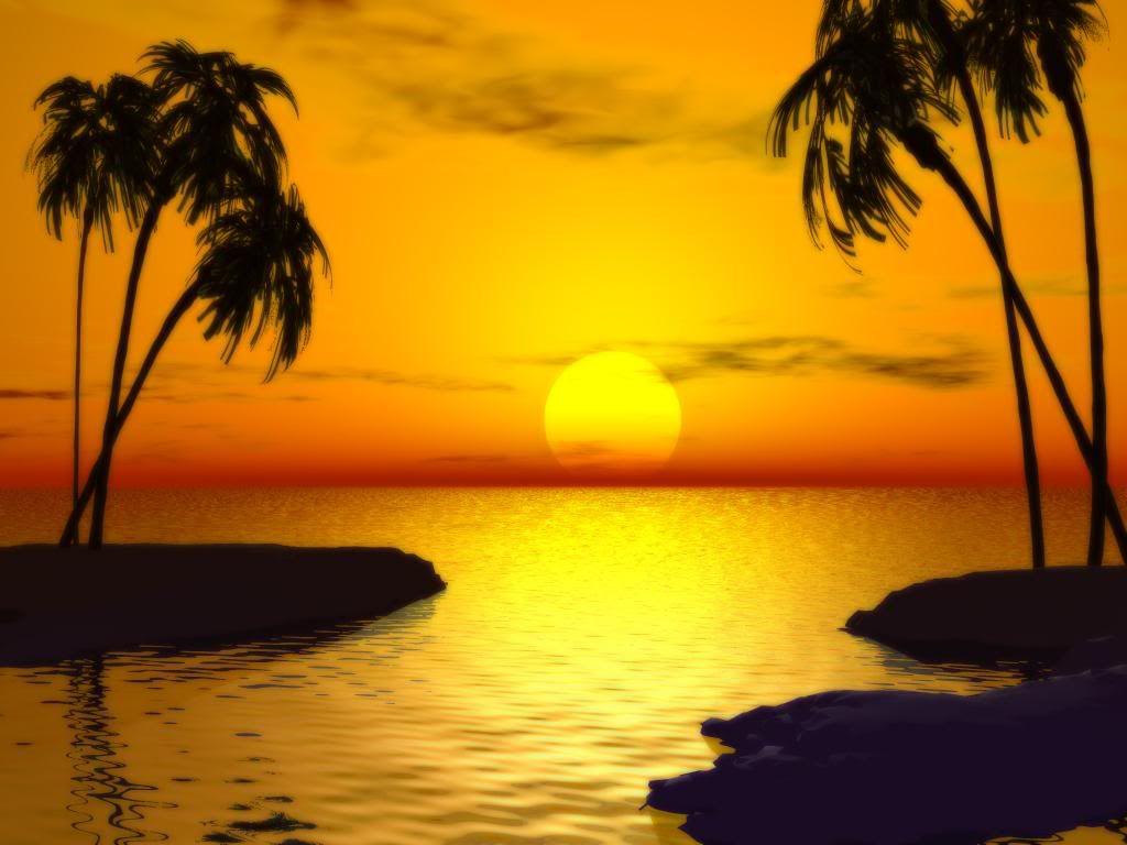 Sunsets Sunset Beautiful Beach Sunset Amazing Sunsets
