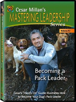 Dog Whisperer Mastering Leadership Series Vol 2 Becoming A Pack