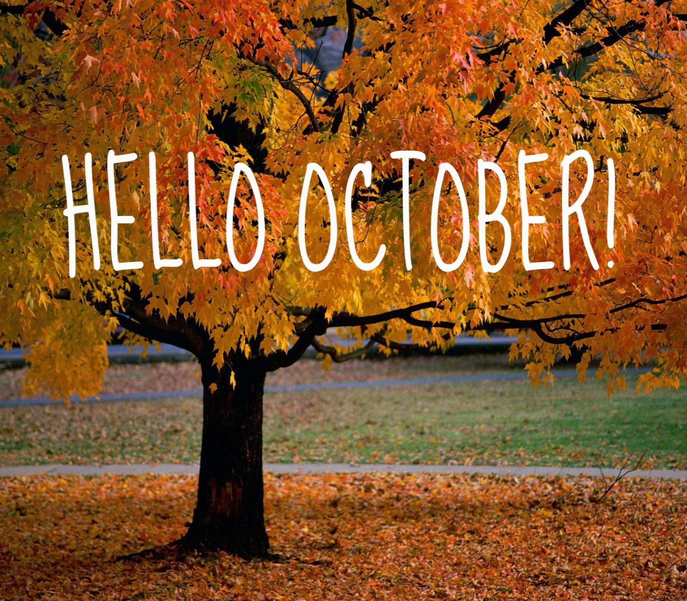 October has come! What will you plant this month