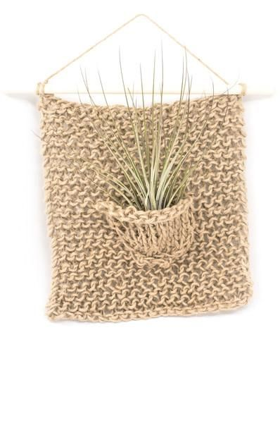 Take your air plant displays to a whole new level! If you love creating terrariums, you'll love these wall hangings. $36