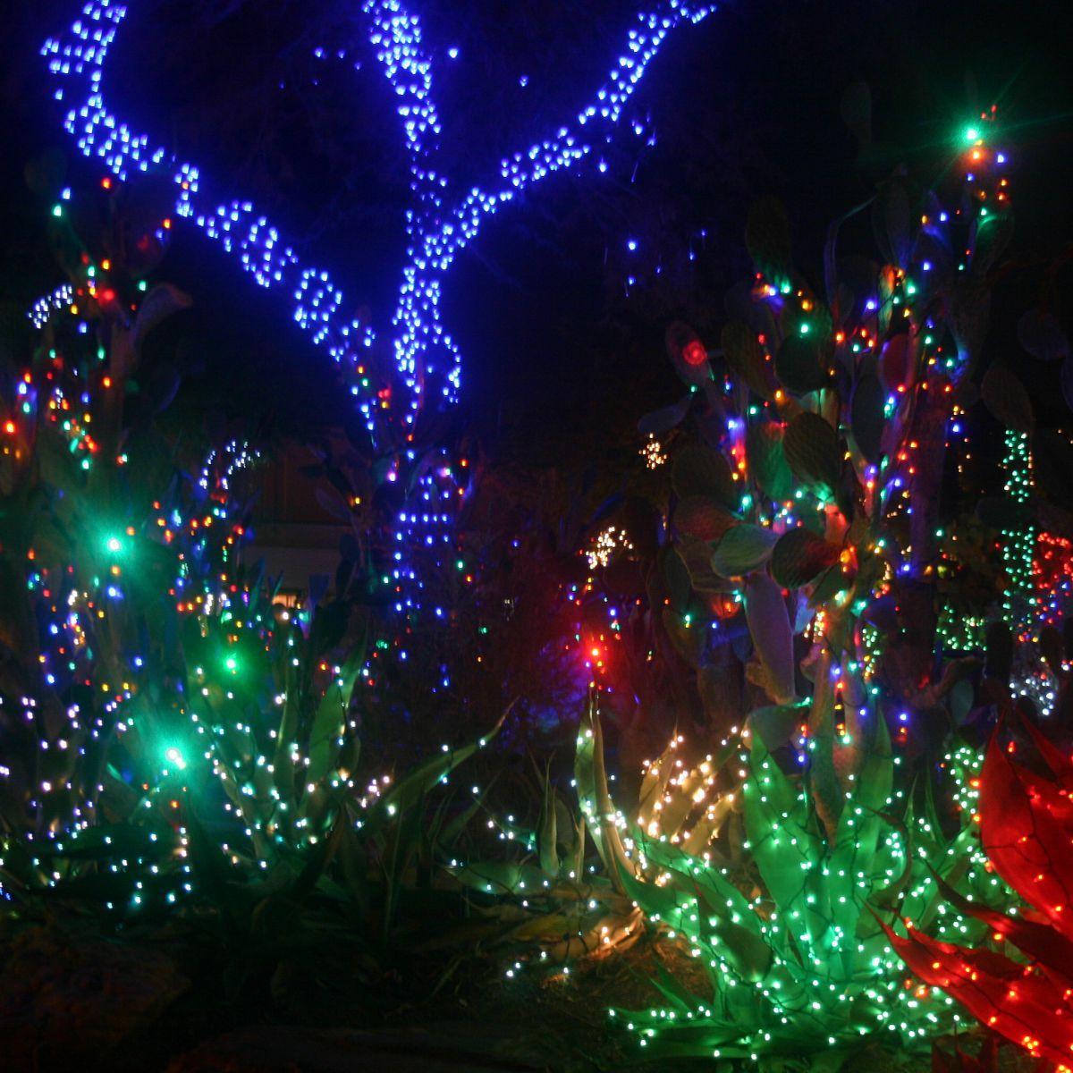 Ethel M Christmas Lights 2021 Christmas Lights 2 Trendi Stuff Christmas Pictures With Lights Cute Christmas Wallpaper Christmas Lights Wallpaper