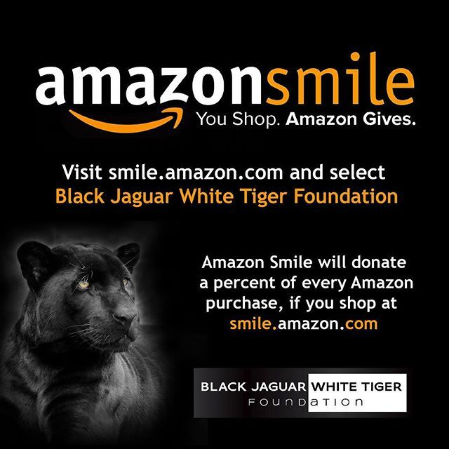 If You Haven T Added The Black Jaguar White Tiger Foundation As