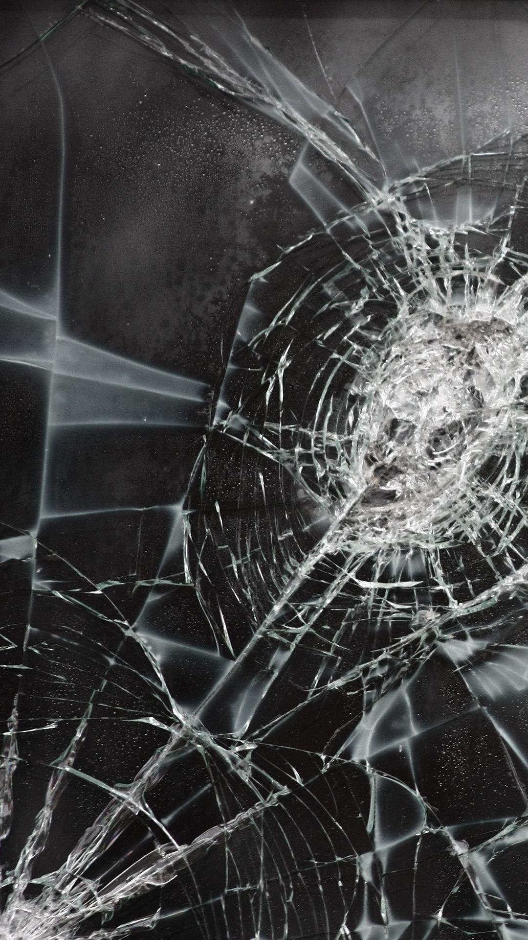 Realistic Cracked Screen Wallpaper Ios : Flowers Wallpaper
