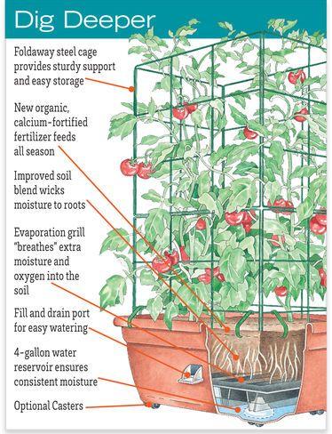 Herb Planter   Self Watering Patio Planter | Gardeners.com