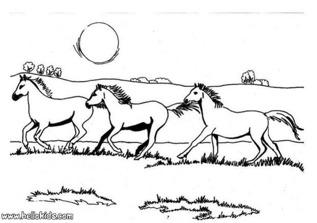 Galloping horses coloring page. Cute and amazing farm