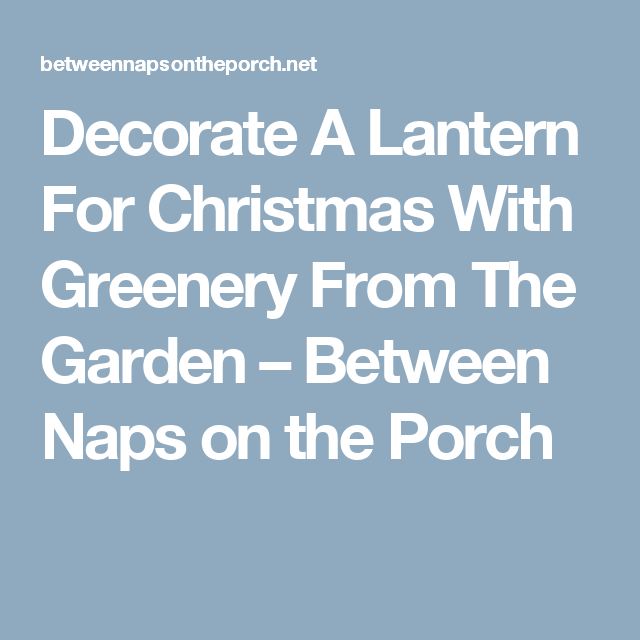 Decorate A Lantern For Christmas With Greenery From The Garden – Between Naps on the Porch