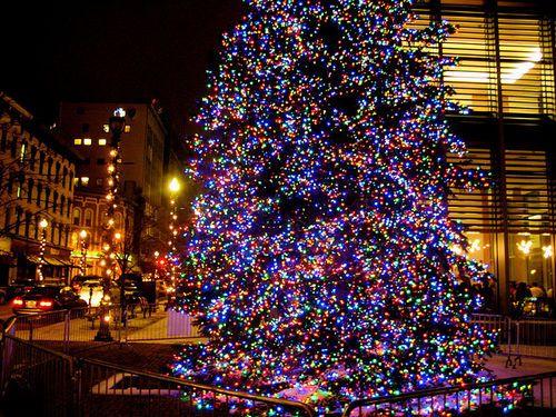 Grand Rapids Michigan-Christmas Tree