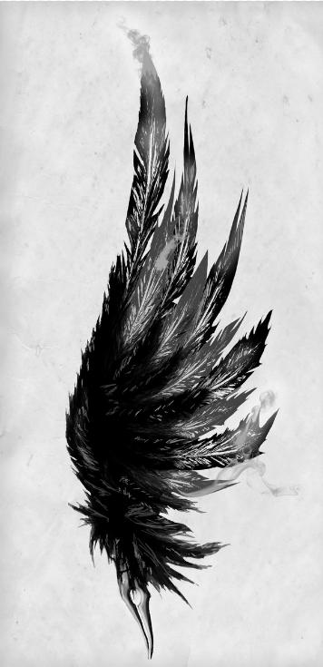 black and white feather | Tattoo ideas | Pinterest | White ...