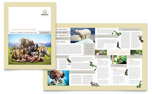 Nature \ Wildlife Conservation Brochure Template - Microsoft - microsoft brochure template