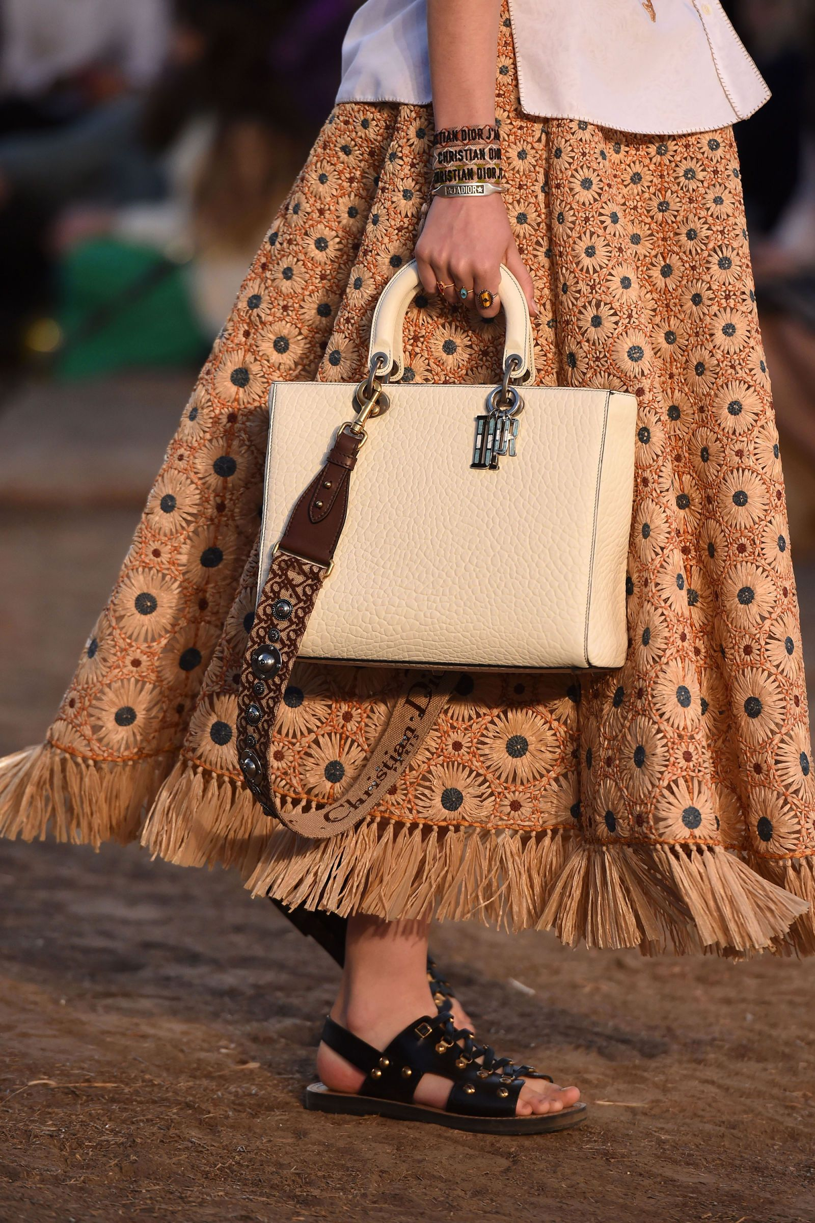 Resort Dior bag preview pictures