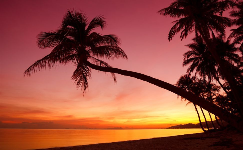Tropical Sunset Beaches Nature Background Wallpapers On
