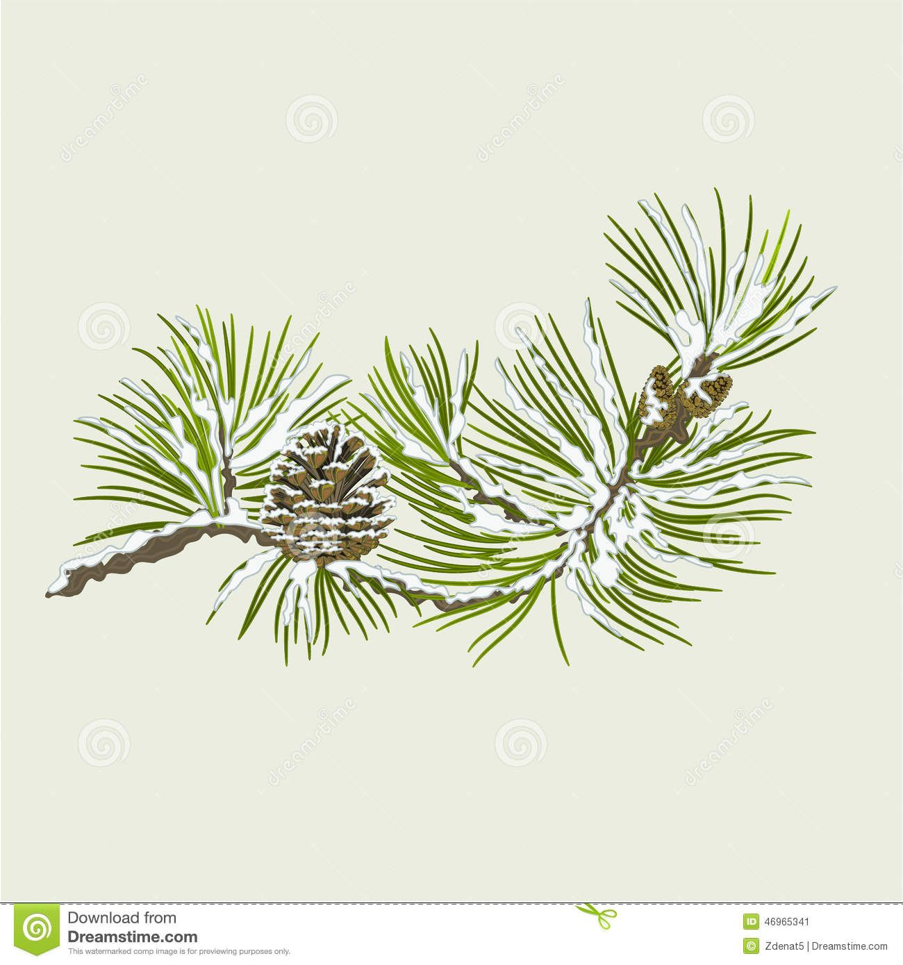 Pine Branch With Snow And Pine Cone Christmas Theme Vector Snow Illustration Illustration Vector Trees