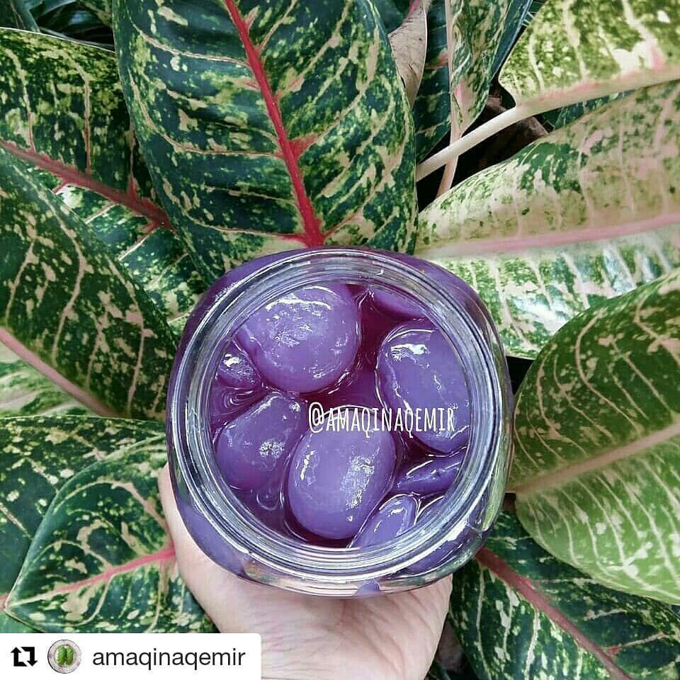 Kedaimamakemir Di Instagram Ini Salah 1 Contoh Penggunaan Bunga Telang Bunga Telang Kering Ready Stok Ya Dijual Dalam Paket Tsa 1 Pake Fruit Snacks Food