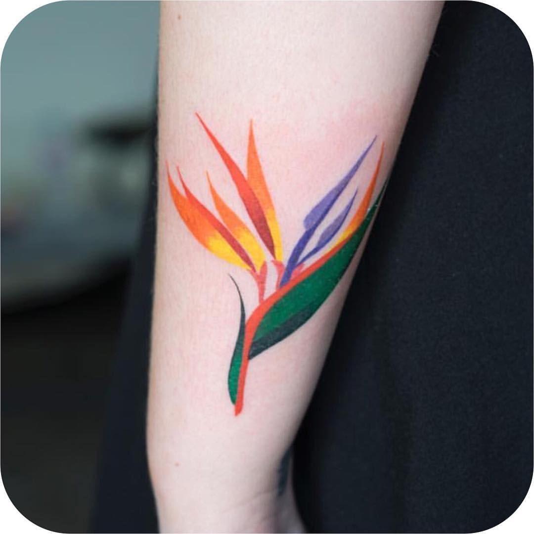 Bird of Paradise made by zihee_tattoo TATTOODO